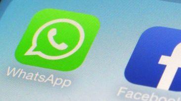 face_whatsapp